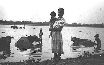 Luzon woman and child, water buffalo in river - Peno River